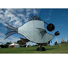 Silver Fish,Sculptures on The Edge,Australia 2015 Photographic Print
