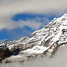 Foggy Mt Rainier  by tmtphotography