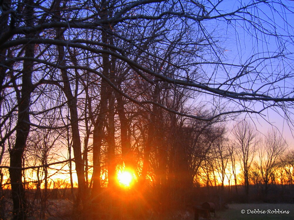 Sunset ~ December 22, 2010 in CT, USA by Debbie Robbins