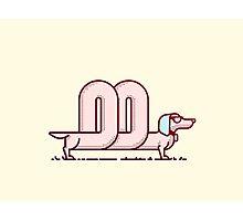 Cool Sausage Dog Photographic Print