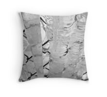 Icy Fence Throw Pillow