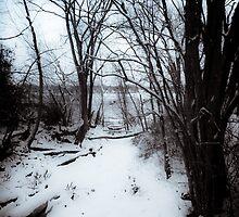 Snowy Creek by Jeanne Sheridan