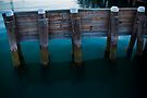 At the Manly ferry dock, Sydney by Chris Westinghouse