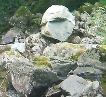 Face in the rocks by amylw1