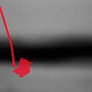 RED by Paul Quixote Alleyne