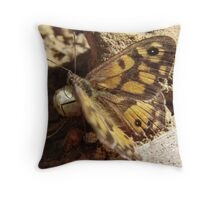 Marbled Xenica Butterfly (Geitoneura klugii) - Horsnell Gully, South Australia Throw Pillow