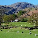 Deepdale Valley in The English Lake District by rodsfotos