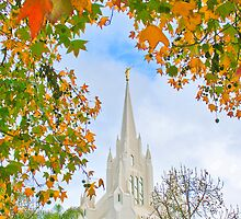 San Diego Temple in Autumn 20x30 by Ken Fortie