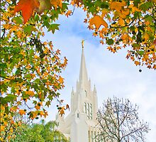 San Diego Temple in Autumn 20x24 by Ken Fortie