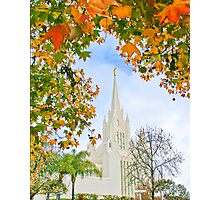 San Diego Temple in Autumn 20x24 Photographic Print