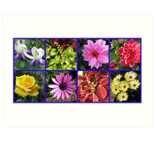 Summer Flowers and Plants Collage Art Print
