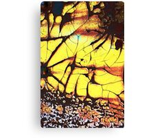 stress fracture Canvas Print