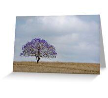 Just a Jacaranda - Near Boonah Qld Australia Greeting Card