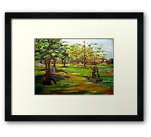 The garden of colors Framed Print