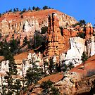 Bryce Canyon series 4 by dandefensor