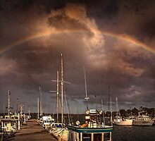 Rainbow dock by Sandra Anderson