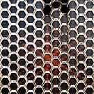 Hexagonal Windows by jahina