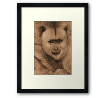Monkey buisness in sepia Framed Print