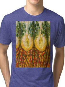 Fading Tri-blend T-Shirt