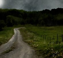 The Road Home by RC deWinter