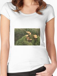 Wild Mushrooms Women's Fitted Scoop T-Shirt