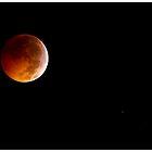 Full Moon Lunar Eclipse by Ali Zaidi