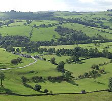 Manifold Valley from Thorpe Cloud by Paul  Green