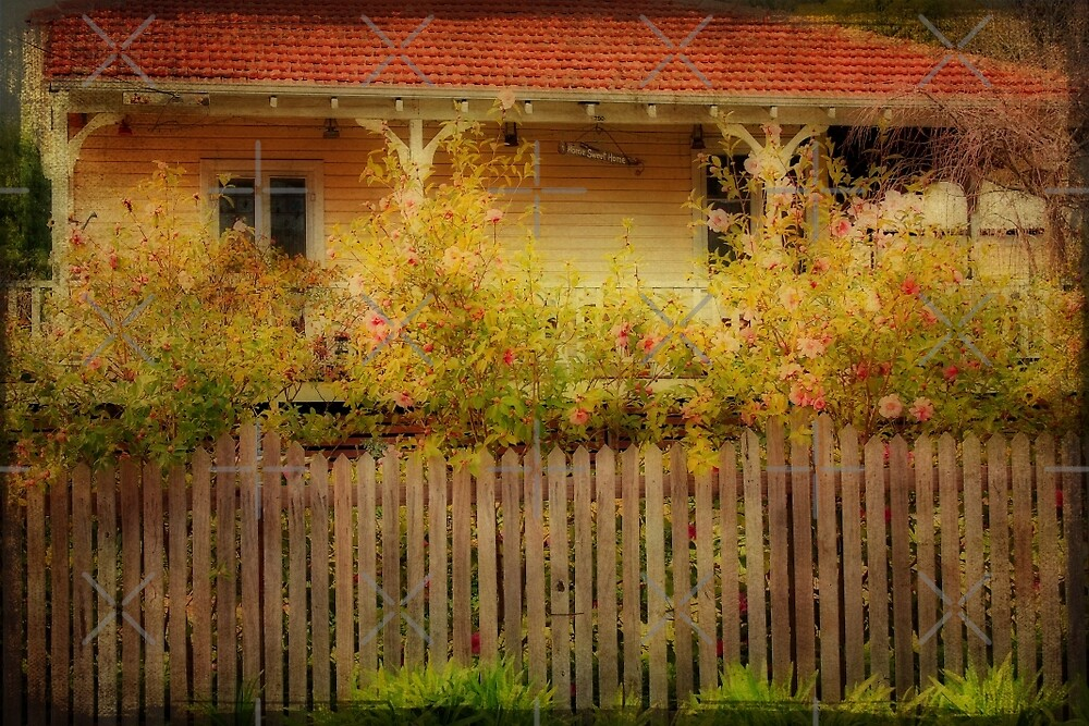 A Cottage in Bridgetown, WA by Elaine Teague