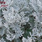 White Lacing (Happy New Year!) by Bea Godbee