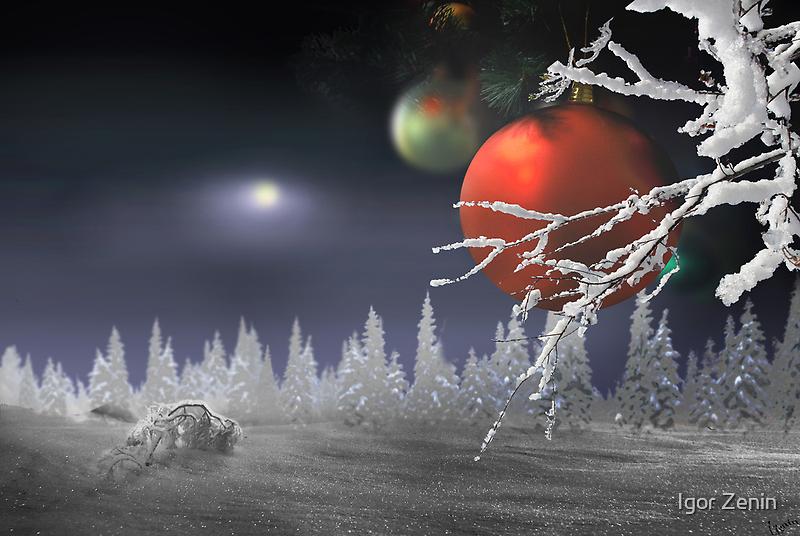 Christmas Moon by Igor Zenin