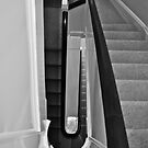 The Stairs (B&W) by lendale