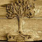 Old wooden hinge by Alien Banana