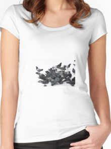 Pigeons in snow Women's Fitted Scoop T-Shirt