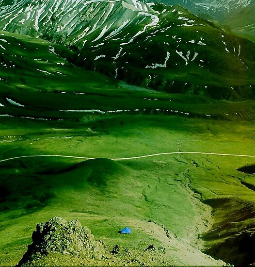 GREEN FIELDS OF ALASKA by RoseMarie747