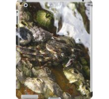 Rock Crab - Depot Beach iPad Case/Skin