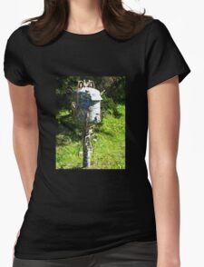 Artistic Letterbox Womens Fitted T-Shirt
