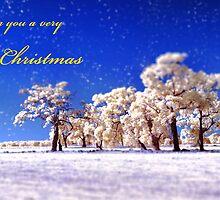 Wishing you a very Merry Christmas by Pene Stevens