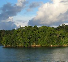 Islet at Marovo Lagoon by Dr Andy Lewis