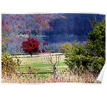 Cloud Shadows, and Ozark Autumn Colors Poster