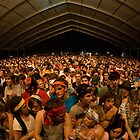 Crowd at Bonnaroo Music Festival by jwphoto1214