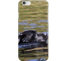 Swimming Labrador iPhone Case/Skin