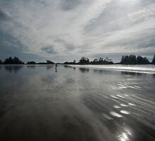 West Coast Beach by David Friederich