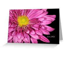 Droplets on a Pink Dahlia Greeting Card