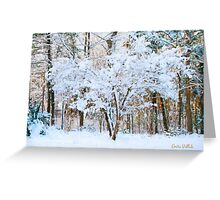 Siebold Viburnum in the Snow Greeting Card