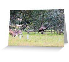 Emus & Kangaroos Greeting Card