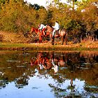 Chincoteague Cowboys by dandefensor
