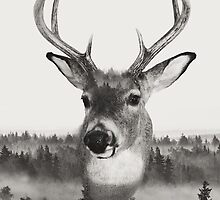 Whitetail Deer Black and White Double Exposure by DoucetteDesigns