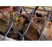 """""""Tendril.  Life and Death in the Scrapyard"""" Photographic Print"""