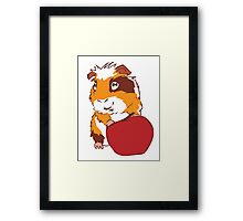 Apple Guinea Pig Framed Print