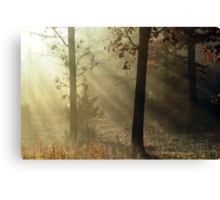 Blessed Morning Canvas Print